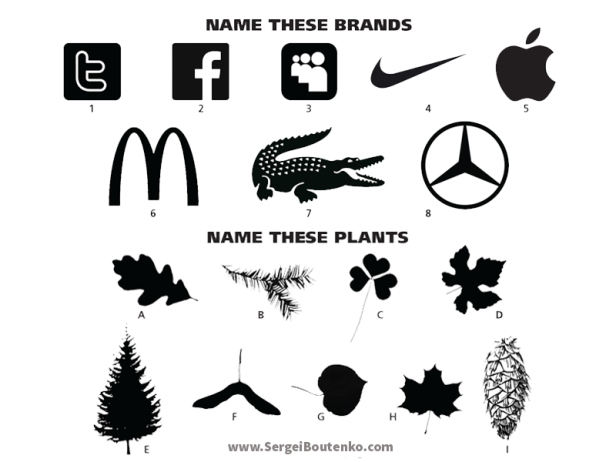 brand-recognition-vs-nature-recognition.jpg