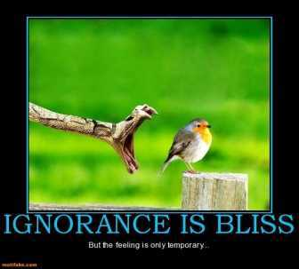 ignorance-bliss-bliss-feeling-ignorance-snake-bird-demotivational-posters-1361407042