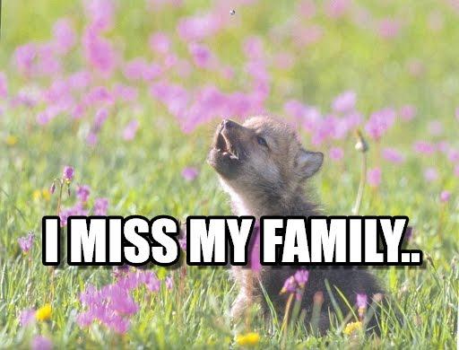 missmyfamily